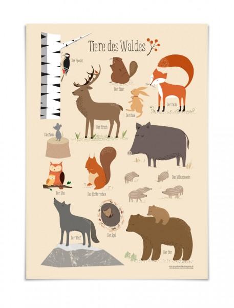 Poster, Plakat Tiere des Waldes, Waldtiere