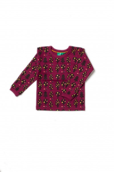 Little Green Radicals Longsleeve Autumn Forest | Bio-Kinderkleidung von LGR onlin